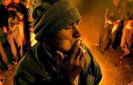 Tỷ lệ người dân mắc bệnh do thuốc lá tăng báo động tại Thái Bình