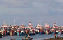 Vướng mắc khi triển khai Nghị định 67 về phát triển thủy sản