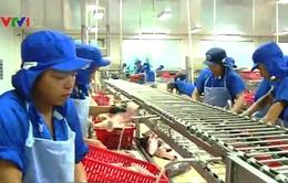 Việt Nam vào Top 5 nhà sản xuất, xuất khẩu thủy sản hàng đầu thế giới