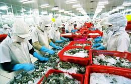 VASEP đề xuất giảm lãi suất cho DN thủy sản để tăng sức cạnh tranh