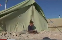 Vì sao các quốc gia Trung Đông không tiếp nhận người tị nạn?