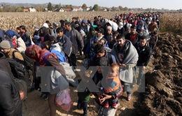 Tranh cãi giữa Nga và Na Uy về tiếp nhận người tị nạn