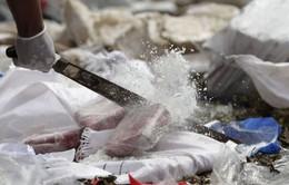 Panama tiêu hủy 13 tấn thuốc phiện