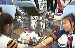 Nhiều hoạt động trong ngày quốc tế Người tình nguyện