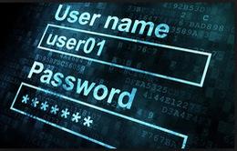 Tin tặc trộm 1,2 tỷ USD từ 7.000 doanh nghiệp Mỹ
