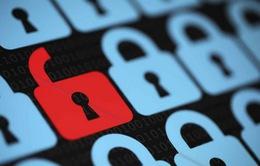 20.000 tài khoản website Topface bị đánh cắp thông tin