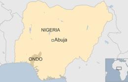 Phát hiện bệnh lạ ở Nigeria gây tử vong chỉ trong 1 ngày