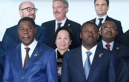 Việt Nam coi trọng các hoạt động của Cộng đồng Pháp ngữ
