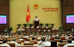 Phê chuẩn việc bổ nhiệm 15 thẩm phán Tòa án Nhân dân tối cao