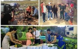 Đặc sắc các chương trình Tết Nguyên đán 2015 trên VTV6