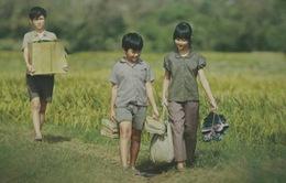 Diện mạo điện ảnh Việt (Kỳ 2): 'Ngọn lửa' mang tên 'Tôi thấy hoa vàng trên cỏ xanh'