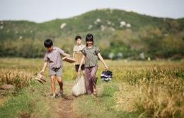 """""""Tôi thấy hoa vàng trên cỏ xanh"""" đoạt giải Phim hay nhất LH Silk Road"""