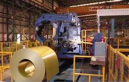 Cần tăng cường quản lý chất lượng tôn, thép nhập khẩu