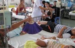 TP.HCM: Số ca mắc sốt xuất huyết duy trì ở mức cao