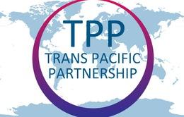 Sự kiện nổi bật trong nước tuần qua (4-10/10): Hoàn tất đàm phán TPP - Cú hích cho kinh tế Việt Nam