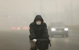 Trung Quốc thiệt hại hơn 5% GDP do ô nhiễm môi trường