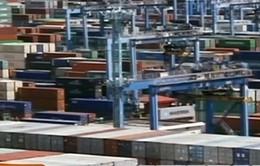 Trung Quốc - Nhà nhập khẩu dầu thô lớn nhất thế giới
