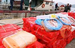 Trung Quốc: Thu giữ hàng tấn thịt đông lạnh từ những năm 1970