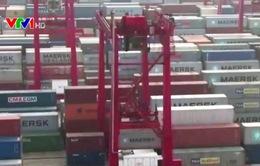 Trung Quốc phạt 7 công ty vận tải quốc tế vì thao túng giá