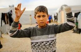 LHQ đề cao vai trò của giới trẻ trong chống khủng bố