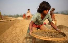 Báo động đỏ nạn cưỡng bức lao động trẻ em