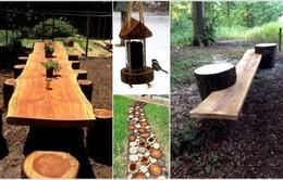 15 cách tái chế thân cây bỏ đi