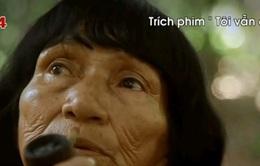 Đưa phim châu Mỹ - Latin đến gần hơn khán giả Việt Nam