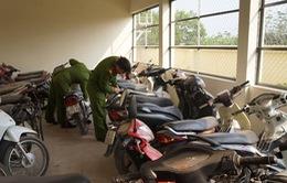Vũng Tàu: Bắt băng trộm xe máy chuyên nghiệp