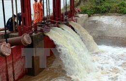 Bắt đầu đợt 2 lấy nước sản xuất vụ Đông Xuân