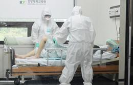 WHO và Hàn Quốc điều tra chung về sự lây lan của MERS