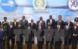 Các nước châu Phi thành lập khu vực thương mại tự do