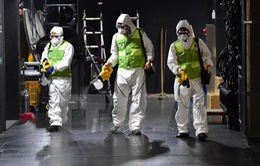Đức:Trường hợp tử vong đầu tiên do MERS trong năm nay