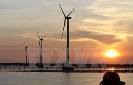 Khởi động giai đoạn hai dự án điện gió Bạc Liêu
