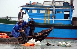 Chìm tàu câu mực ở Trường Sa: Toàn bộ ngư dân đã được cứu