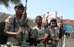 Giao tranh dữ dội ở Trung Yemen, ít nhất 30 người thiệt mạng