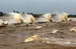 Áp thấp mạnh lên thành bão, vùng biển Hoàng Sa gió mạnh cấp 6-7