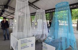 Thế giới vẫn còn 3 tỷ người có nguy cơ mắc bệnh sốt rét