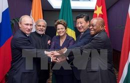 Nga thông qua Hiệp ước lập Quỹ dự trữ ngoại tệ chung cho BRICS