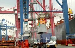 TP.HCM: Tăng trưởng GDP năm 2015 dự kiến đạt 9,8%