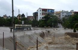 Cấp điện trở lại cho 4.810 khách hàng bị ảnh hưởng do mưa lũ