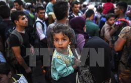 Đức kêu gọi họp khẩn tìm giải pháp cho vấn đề người di cư