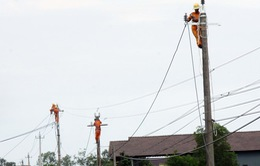 Ký kết dự án cáp ngầm cấp điện cho đảo Cù Lao Chàm