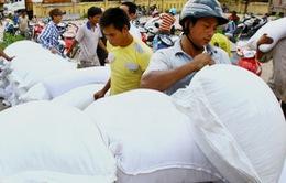 Quảng Bình khẩn trương phân bổ hơn 1.200 tấn gạo hỗ trợ cứu đói