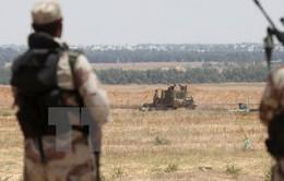 Ai Cập hủy phán quyết coi phong trào Hamas là tổ chức khủng bố