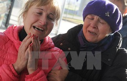 Máy bay Nga rơi tại Ai Cập: Tổ lái đã nhiều lần thông báo về lỗi động cơ trước chuyến bay