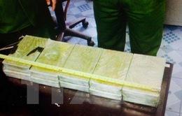 Thu giữ gần 20kg ma túy trên tuyến biên giới Móng Cái