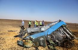 Giả thiết mới về vụ máy bay Nga rơi tại Ai Cập
