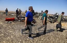 Vụ rơi máy bay Nga rơi: Đội tìm kiếm, cứu nạn Nga rời khỏi Ai Cập