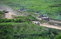 Nga tổ chức tập trận ở nhiều nơi trên bán đảo Crimea