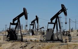 Hạ viện Mỹ thông qua dự luật bãi bỏ lệnh cấm xuất khẩu dầu